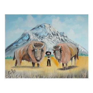 Buffalo Bill illustration wild west Postcard