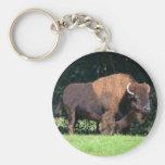 Buffalo (Bison) Kansas, Oklahoma, Wyoming Basic Round Button Key Ring