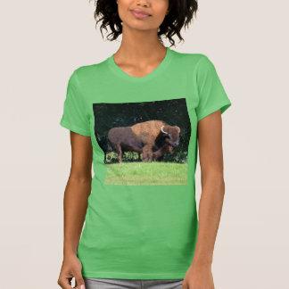 Buffalo (Bison) Kansas, Oklahoma, Wyoming T-Shirt
