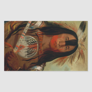 Buffalo Bull's Back Fat Head Chief Blood Tribe Rectangular Sticker