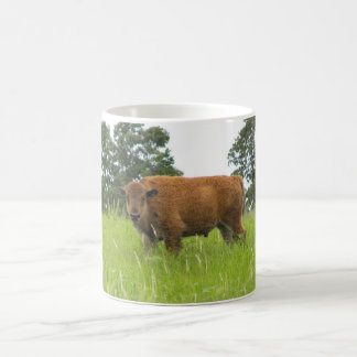 Buffalo Calf Coffee Mug
