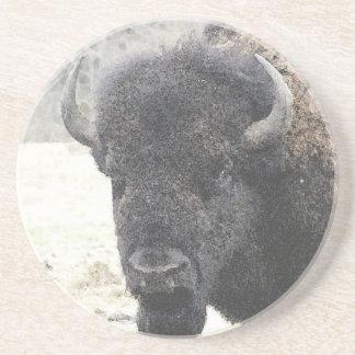 Buffalo Coaster