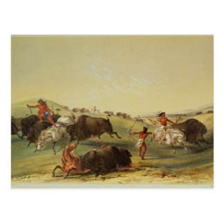 Buffalo Hunt Postcard