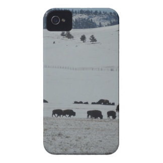 Buffalo in snow covered valley with Mountains iPhone 4 Case-Mate Case