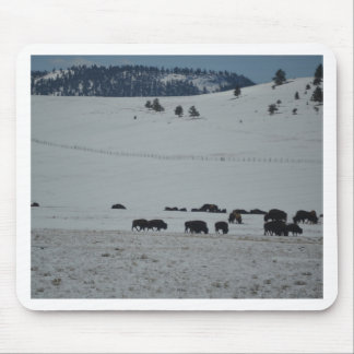 Buffalo in snow covered valley with Mountains Mouse Pad