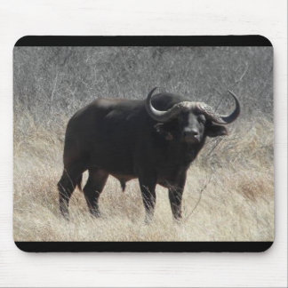 Buffalo In South Africa Mouse Mat