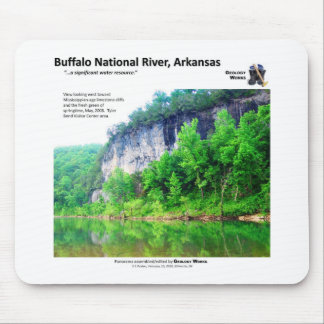 Buffalo National River I - Spring Foliage 2008 Mouse Mat