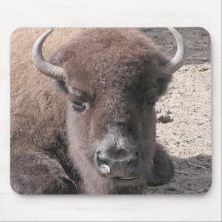 Buffalo Photo Mousepad