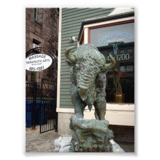 Buffalo Sculpture Outside Drs Office in Buffalo NY Art Photo