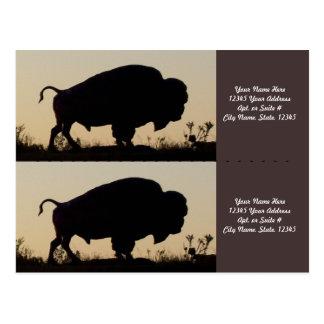 Buffalo Silhouette Bookmarkers Postcard