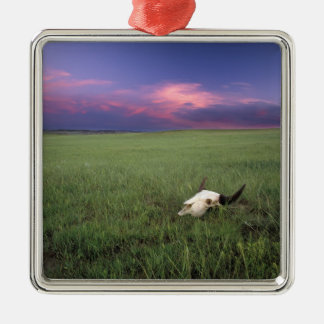 Buffalo Skull in Prairie Grass near Medora Christmas Ornament