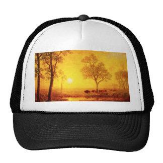 Buffalo Sunset on the Mountain Hat