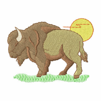 Buffalo with sun