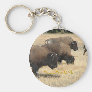 Buffalo Yellowstone Keychain