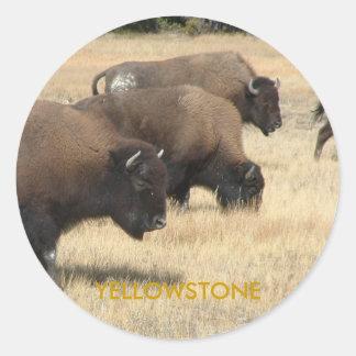 Buffalo Yellowstone Sticker