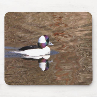 Bufflehead Duck with Reflection Mouse Pad