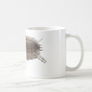Bug Armadillidium Vulgare Coffee Mugs