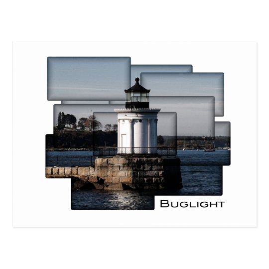 Bug Light Painting Postcard