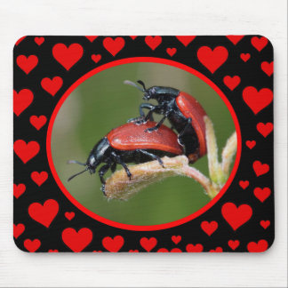 Bug Love Mouse Mat
