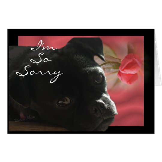 Buggs Dog Belated -- customise occasion Card