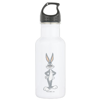 BUGS BUNNY™ | Bunny Stare 532 Ml Water Bottle