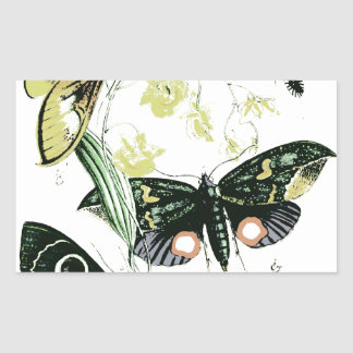 Bugs & Flying Insects Photo Design Rectangle Sticker