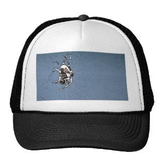 Bugs Trucker Hats