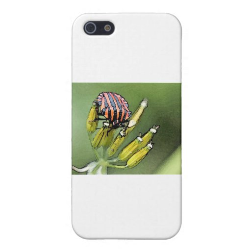Bugs iPhone 5 Covers