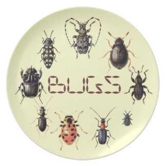 Bugs Plate for Insect fans