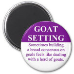 Building Consensus on Goal Setting (3) Magnet