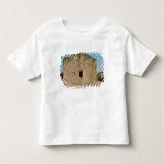 Building in Old Jericho Toddler T-Shirt