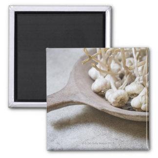 Bulbs of garlic in an earthenware bowl magnet