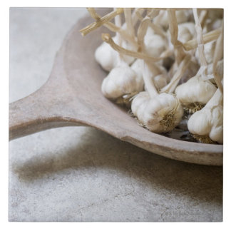 Bulbs of garlic in an earthenware bowl tile