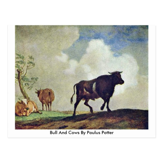 Bull And Cows By Paulus Potter Postcard