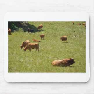 Bull and cows mouse pad