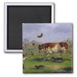 Bull Baiting (oil on paper laid on panel) Magnet