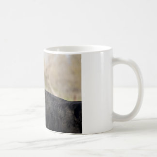 bull basic white mug