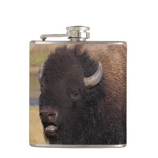 bull bison grunting hip flask