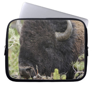 Bull Bison Resting in Forest, Yellowstone Laptop Sleeve