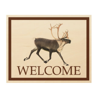 Bull Caribou (Reideer) - Welcome Wood Wall Art