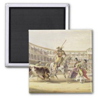 Bull Charging a Picador, 1865 (colour litho) Fridge Magnet