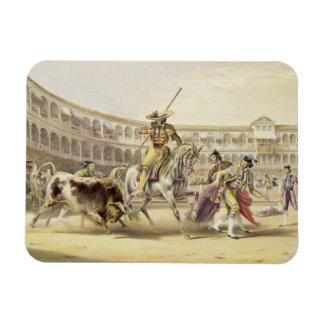 Bull Charging a Picador, 1865 (colour litho) Rectangular Photo Magnet