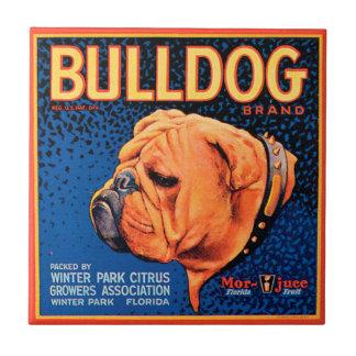 Bull Dog on a Blue Background Tile