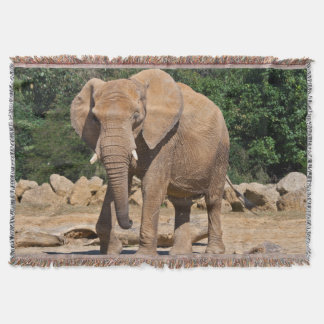 Bull Elephant Throw Blanket
