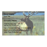 Bull elk Double-Sided standard business cards (Pack of 100)