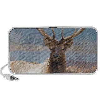 Bull elk by the river laptop speaker