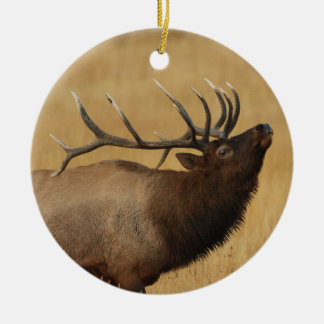bull elk christmas ornament