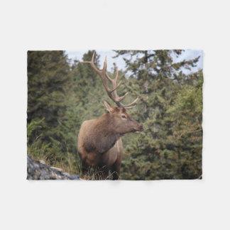 Bull Elk In Jasper Fleece Blanket
