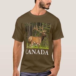 Bull elk in velvet, Canada T-Shirt
