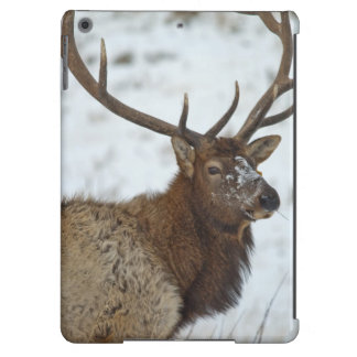 Bull elk in winter in Yellowstone National iPad Air Cover